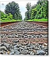 Summer Railroad Tracks Acrylic Print