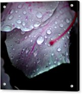 Summer Rain In Georgia Acrylic Print