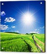 Summer Rural Landcape Acrylic Print