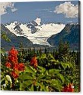 Summer Scenic Of Grewingk Glacier And Acrylic Print