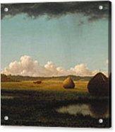 Summer Showers Acrylic Print by Martin Johnson Heade