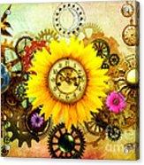 Summer Solstice 2014 Acrylic Print