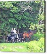 Summer Stroll Acrylic Print by Elizabeth Dow