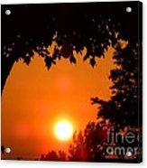 Summer Sunrise Right Side Acrylic Print