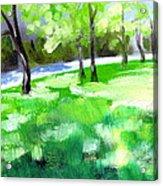 Summer Sunshine In South Carolina Acrylic Print