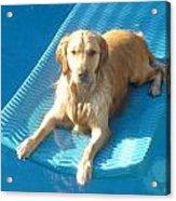 Summer Swim Acrylic Print