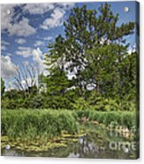 Summer Time At Moraine View State Park Acrylic Print
