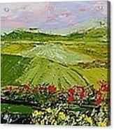 Summer Valley Acrylic Print