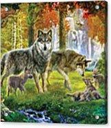 Summer Wolf Family Acrylic Print by Jan Patrik Krasny