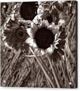 Summer's End Xxvi Acrylic Print