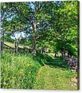 Summertime At The Farm Acrylic Print