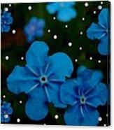Summertime Blues Pop Art Acrylic Print