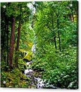 Summertime In The Cascades Acrylic Print