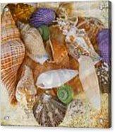 Summertime Relics Acrylic Print