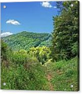Summertime Trail At The Gap Acrylic Print