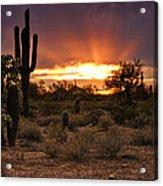 Sun Rays Over The Sonoran Desert  Acrylic Print