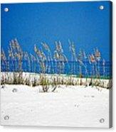 Sun Sand Surf Acrylic Print