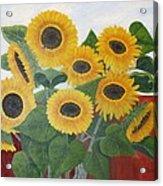 Sun Seekers Acrylic Print