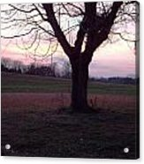 Sun Set In Dec 2013 Acrylic Print