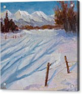Sun Snow And Shadows Acrylic Print