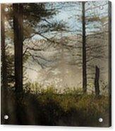 Sun Up At Lowell Lake 2 Acrylic Print