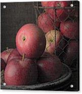 Sun Warmed Apples Still Life Acrylic Print