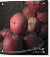 Sun Warmed Apples Still Life Square Acrylic Print