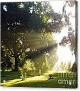 Sunbeam Landscape Acrylic Print