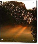 Sunbeams And Fog Acrylic Print