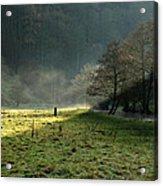 Sunbeams And Mist - Wolfscote Dale Acrylic Print