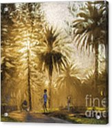 Sunbeams At Avalon Acrylic Print