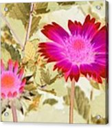 Sunburst - Photopower 2251 Acrylic Print