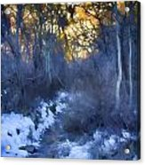 Sundance Aspen Trail Acrylic Print