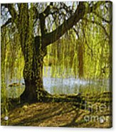 Sunday In The Park Acrylic Print