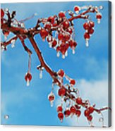 Sunday With Cherries On Top Acrylic Print