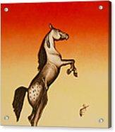 Sundown Dancer Acrylic Print