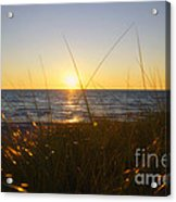 Sundown Jogging Acrylic Print