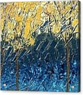 Sundrenched Trees Acrylic Print