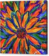 Sunflower Burst Acrylic Print