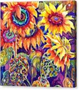 Sunflower Garden Acrylic Print by Ann  Nicholson