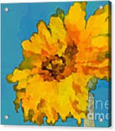 Sunflower Illusion Acrylic Print