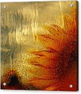 Sunflower In The Rain Acrylic Print