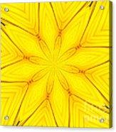 Sunflower Kaleidoscope 1 Acrylic Print