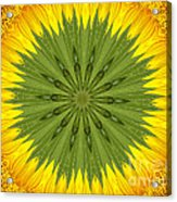 Sunflower Kaleidoscope 3 Acrylic Print