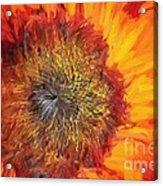 Sunflower Lv Acrylic Print