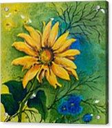 Sunflower Magic Acrylic Print