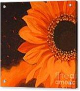Sunflower Mystique Acrylic Print