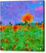 Sunflower Rhapsody Acrylic Print