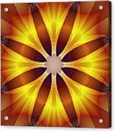 Sunflower Rose Acrylic Print