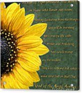 Sunflower Scripture Acrylic Print